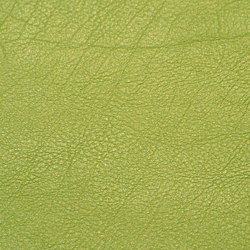 skai Evida lime | Faux leather | Hornschuch