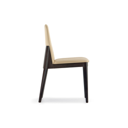 Allure 735 | Restaurant chairs | PEDRALI