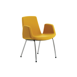 Jolly | Chairs | Ares Line
