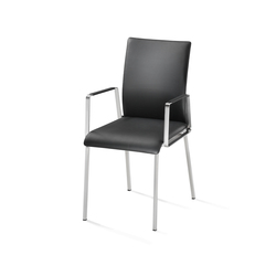 Othello Chair | Sedie visitatori | die Collection