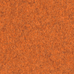 Arosa orange | Wall coverings | Steiner