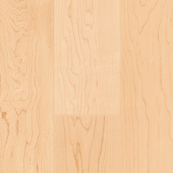 FLOORs Hardwood Canadian Maple elegance | Wood flooring | Admonter