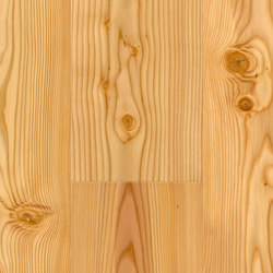 FLOORs Softwood Larch basic | Wood flooring | Admonter Holzindustrie AG