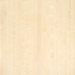 ELEMENTs Maple | Wood panels | Admonter