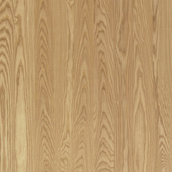 ELEMENTs Fresno medium | Planchas de madera y derivados | Admonter