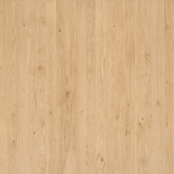 ELEMENTs Oak | Planchas | Admonter Holzindustrie AG