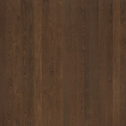 ELEMENTs Oak dark | Wood panels / Wood fibre panels | Admonter