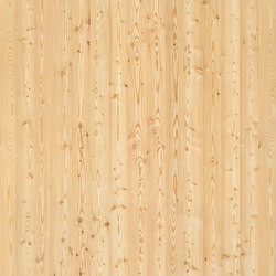 ELEMENTs Larch | Planchas | Admonter Holzindustrie AG