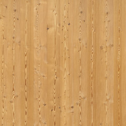 ELEMENTs Larch aged | Wood panels / Wood fibre panels | Admonter