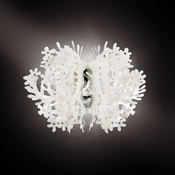 Fiorella wall | General lighting | Slamp