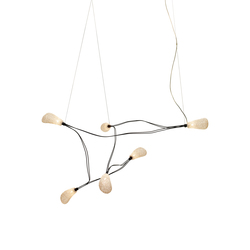 Dapple Ceiling Six | Suspended lights | ANGO