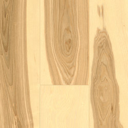 Hardwood Ash olive basic | Wood flooring | Admonter