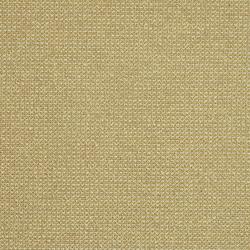Certain 002 Millet | Fabrics | Maharam