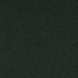 Lariat 005 Hunter | Stoffbezüge | Maharam