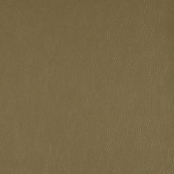 Lariat 008 Fern | Stoffbezüge | Maharam
