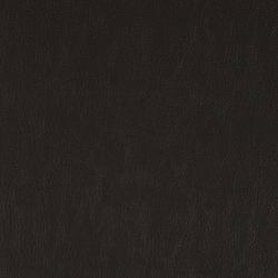 Lariat 012 Oxblood | Fabrics | Maharam