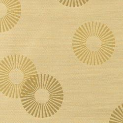 Radiant 001 Chemise | Fabrics | Maharam
