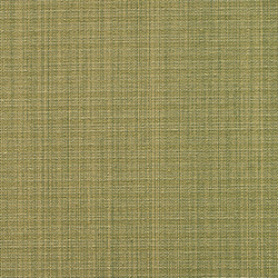 Recollection 003 Apple | Fabrics | Maharam