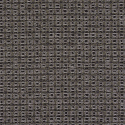 Setting 004 Graphite | Fabrics | Maharam