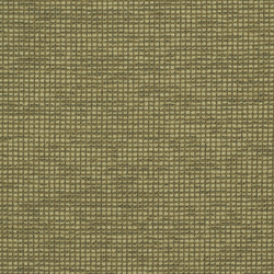 Steady 009 Acre | Fabrics | Maharam