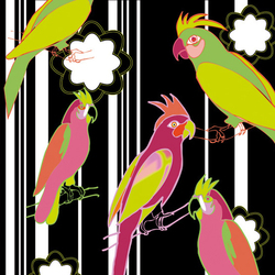 Funny Parrots | Wall coverings / wallpapers | Wall&decò