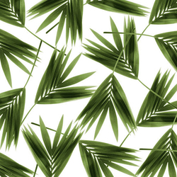 Jungle | Wall coverings / wallpapers | Wall&decò