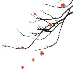 Kanji | Wall art / Murals | Wall&decò