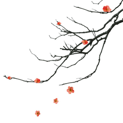 Kanji | Quadri / Murales | Wall&decò