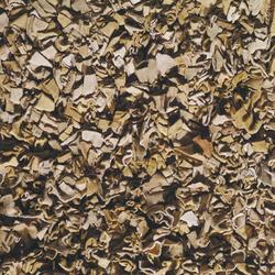 Fez Beige | Rugs / Designer rugs | Toulemonde Bochart