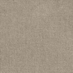 Isy V Dune | Carpet rolls / Wall-to-wall carpets | Carpet Concept