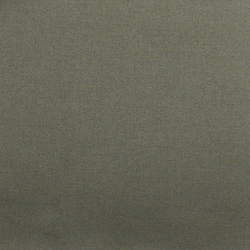 Tabularasa col. 018 | Curtain fabrics | Dedar