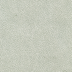 Cuirs leathers | Conquistador VP 690 04 | Wall coverings / wallpapers | Elitis