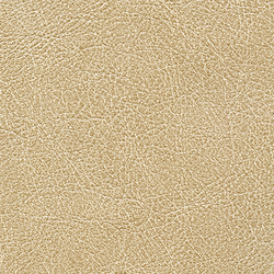 Cuirs leathers | Conquistador VP 690 06 | Wall coverings / wallpapers | Elitis