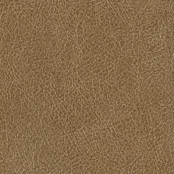 Cuirs leathers | Conquistador VP 690 07 | Color marrón | Elitis