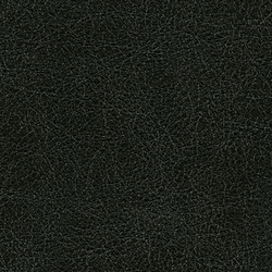 Cuirs leathers | Conquistador VP 690 09 | Colour black | Élitis