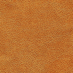 Cuirs leathers | Conquistador VP 690 10 | Colour brown | Élitis