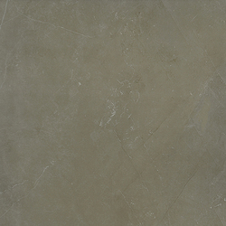 India Silver | Tiles | Porcelanosa