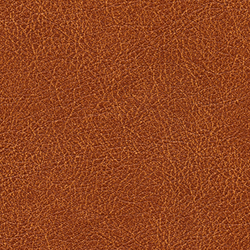 Cuirs leathers | Conquistador VP 690 11 | Wall coverings / wallpapers | Elitis