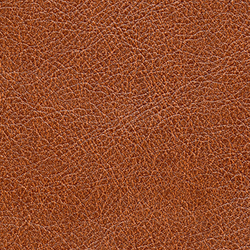 Cuirs leathers | Conquistador VP 690 12 | Wall coverings / wallpapers | Elitis