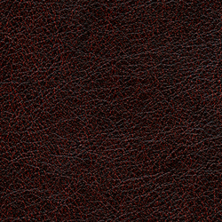 Cuirs leathers | Conquistador VP 690 13 | Wall coverings / wallpapers | Elitis