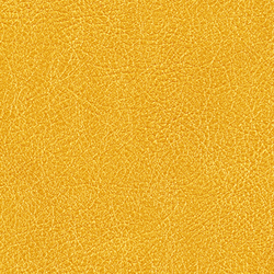 Cuirs leathers | Conquistador VP 690 14 | Colour yellow | Élitis