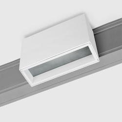 Prologe 80 on-Regule Triple/T16 | Line voltage track lighting | Kreon