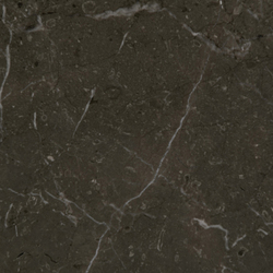 Marmoles Habana Brown | Natural stone panels | Porcelanosa