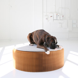 felt pad | Dog beds | molo