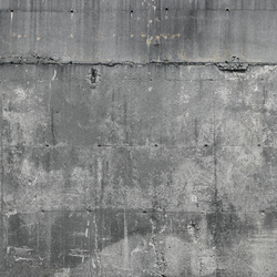 Concrete wall 3 | Wall art / Murals | CONCRETE WALL