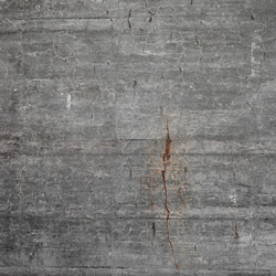 Concrete wall 8 | Wall art / Murals | CONCRETE WALL