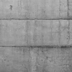 Concrete wall 11 | Wall art / Murals | CONCRETE WALL