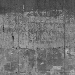 Concrete wall 16 | Wall art / Murals | CONCRETE WALL
