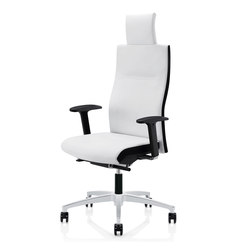 Cubo Flex | CF 105 | Office chairs | Züco