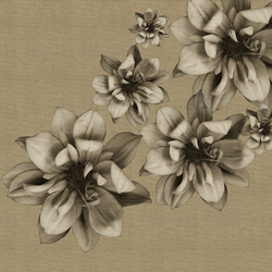 Flowers Poetry | Wallcoverings | Wall&decò